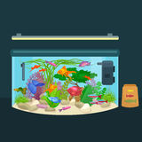Aquarium fish, seaweed underwater, tank isolated on dark background. Vector illustration Royalty Free Stock Photography