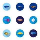 Aquarium fish set icons in flat style. Big collection of aquarium fish vector symbol Royalty Free Stock Images
