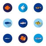 Aquarium fish set icons in flat style. Big collection of aquarium fish vector symbol. Stock Stock Images
