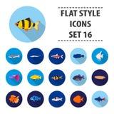 Aquarium fish set icons in flat style. Big collection aquarium fish vector symbol stock illustration. Aquarium fish set icons in flat style. Big collection Stock Image