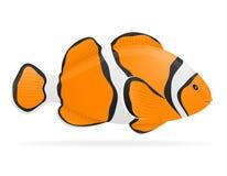 Aquarium fish vector illustration. Isolated on white background Royalty Free Stock Images