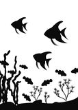 Aquarium fishes of a scalar and fish-clowns float near seaweed. Vector silhouette. Seaweed at the bottom of the sea and school fish vector Stock Photos