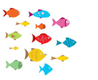 Aquarium Fishes. Vector illustration on white Stock Photo