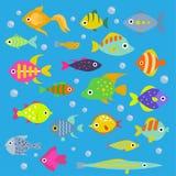 Aquarium flat fish vector ocean breeds underwater bowl tropical aquatic animals water nature pet characters illustration. Beautiful swimfish freshwater Stock Photography