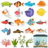 Aquarium flora and fauna color flat icons set. For web and mobile design Royalty Free Stock Photography