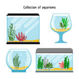 Aquarium forms vector illustration. Decoration home empty glass tanks isolated. On white background. Set of transparent aquarium for fish Royalty Free Stock Photography