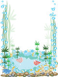Aquarium frame Royalty Free Stock Photo