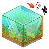 Aquarium with Golden patterns and exotic fish Royalty Free Stock Photography
