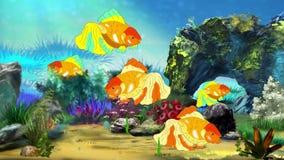 Aquarium Goldfish stock video footage