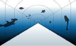 Aquarium illustration in one-point perspective. Ready to be edited through Adobe Illustrator as a vector Stock Photos