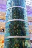 Aquarium in mall Aviapark. MOSCOW - May 4, 2015: aquarium in mall Aviapark, the largest shopping center in Europe Stock Photos