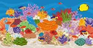 Aquarium Marineriffaquarium mit Fischen und Korallen Lizenzfreies Stockbild