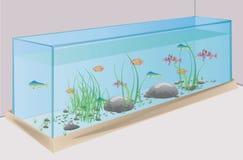 Aquarium mit Fischsteinen und -gras Stockfotografie