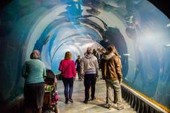 Aquarium on the modern zoo stylized to Africa. WROCLAW, POLAND - OCTOBER 22, 2016: Aquarium on the modern zoo stylized to Africa  `Africarium` in Wroclaw, Poland Royalty Free Stock Photo