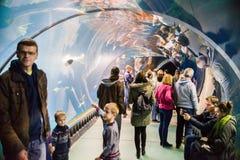 Aquarium on the modern zoo stylized to Africa. WROCLAW, POLAND - OCTOBER 22, 2016: Aquarium on the modern zoo stylized to Africa  `Africarium` in Wroclaw, Poland Royalty Free Stock Image