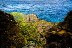 Aquarium naturel étonnant en île tropicale de roches côtières avec les poissons vivants Photo stock