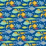 Aquarium ocean fish underwater bowl tropical aquatic animals water nature pet characters seamless pattern background. Aquarium ocean fish underwater bowl Stock Image