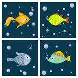 Aquarium ocean fish underwater cards bowl tropical aquatic animals water nature pet characters vector illustration. Beautiful swim freshwater nautical seaside Stock Photography
