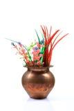 Aquarium Plants Decoration Royalty Free Stock Photography