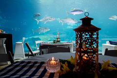 Aquarium in restaurant. Tuna swimming passed a laid table at a restaurant with a massive Aquarium in it. candle lit and romantic place to eat and take your loved stock image