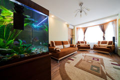 Aquarium in a room. Beautiful aquarium in a room to modern apartment Royalty Free Stock Image