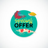 Aquarium sale banner, sticker with place for text. Cartoon flat aquarium banners with fish  vector illustration Royalty Free Stock Images