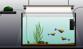 Aquarium. Schematic representation of the aquarium. Aquarium equipment. Vector illustration.n Stock Image