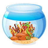 An aquarium with a seahorse Stock Photography