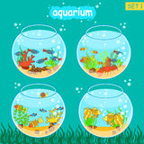 Aquarium set with fish and decoration. Fishbowl set. Vector collection Stock Images
