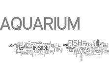 Aquarium Supplies Part My First Experience With Bettas Word Cloud Royalty Free Stock Image