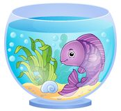 Aquarium theme image 6 Royalty Free Stock Photography