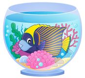 Aquarium topic image 1 Stock Photos