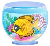 Aquarium topic image 3 Stock Photos