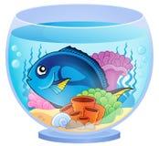 Aquarium topic image 5 Stock Photo
