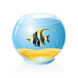 Aquarium with Tropical Fish. Fish Bowl with Exotic Fish. Isolated Vector Illustration Stock Images