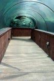 Aquarium Tunnel. Tunnel view of aquarium fish at hotel in Bahamas Stock Photos