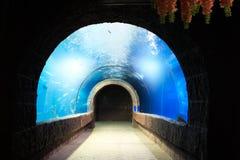 Aquarium tunnel. Aquarium tunnel for walk to see the underwater stock photo