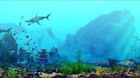 Aquarium underwater scene. Shark swim. Stream of fish. CG 3d rendering. stock video
