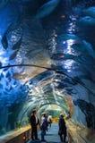 Aquarium Royalty Free Stock Images