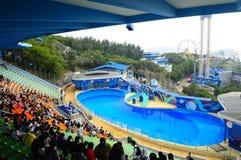 Aquariumerscheinen Stockfoto