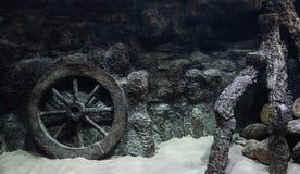 Aquariumsdekoration Dekoratives Wagenrad und hölzerner Baumstumpf darunter Lizenzfreie Stockfotografie