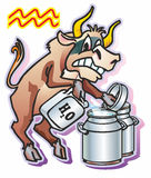 Aquarius. Bull ox calf  pours water milk cans jerry can a symbol a sign of the zodiac Aquarius Royalty Free Stock Photography