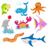 Aquatic. And marine life cartoon Royalty Free Stock Photos