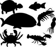 Aquatic animals. Silhouette illustration of aquatic animals royalty free illustration