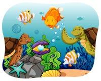 Aquatic Stock Photo