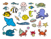 Aquatic animals Royalty Free Stock Photos