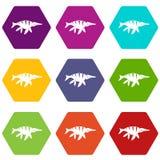 Aquatic dinosaur icon set color hexahedron. Aquatic dinosaur icon set many color hexahedron isolated on white vector illustration royalty free illustration