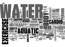 Free Aquatic Exercise Equipmentword Cloud Royalty Free Stock Images - 96648439