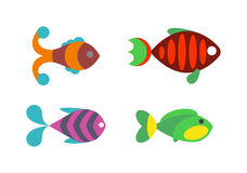 Aquatic fish wildlife aquarium underwater nature tropical seafood animal vector. Stock Photography