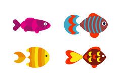 Aquatic fish wildlife aquarium underwater nature tropical seafood animal vector. Stock Image
